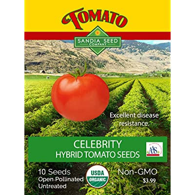 Celebrity Tomato Hybrid - 10 Seeds - All American Selections Winner! : Garden & Outdoor