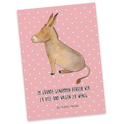 Mr Mrs Panda Einladung Sprüche Postkarte Esel Mit