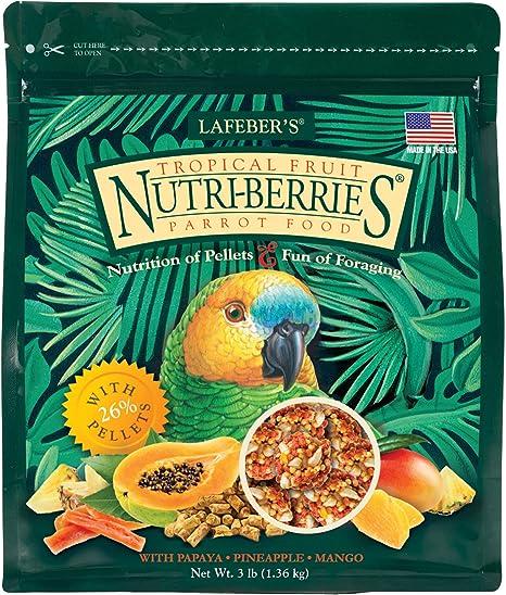 LAFEBER'S Tropical Fruit Nutri-Berries Nourriture pour Oiseaux pour Animaux  de Compagnie, fabriqué avec des ingrédients sans OGM et de qualité Humaine, pour  perroquets 1,4 kg: Amazon.fr: Animalerie