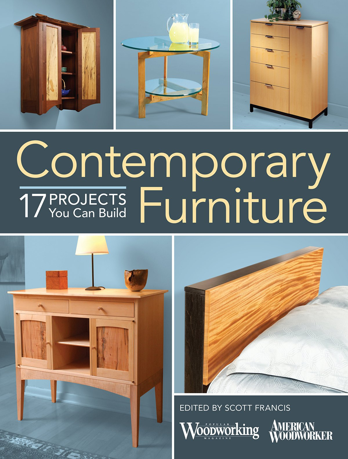Merveilleux Contemporary Furniture: 17 Projects You Can Build: Scott Francis:  9781440345685: Amazon.com: Books