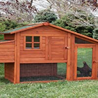 Chicken Coop Building Guide