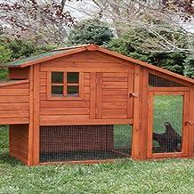 Chicken Coop Building Guide