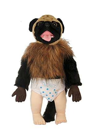Commonwealth Toy Puppy Monkey Baby Talking Plush Animals Figures