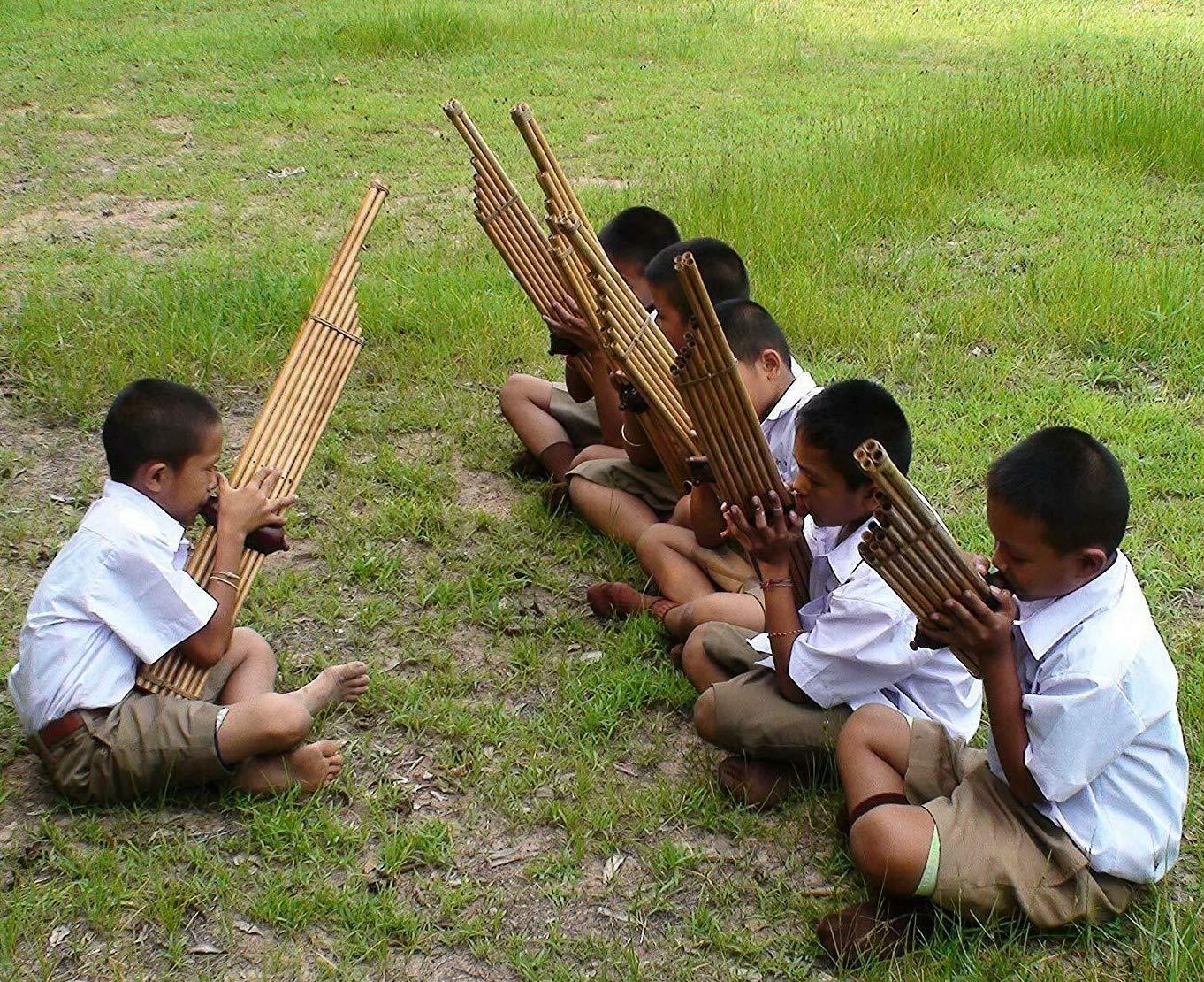 Cozinest Professional Thai Bamboo Khaen Instrument Double Silver Reed Isan Mouth Organ Traditional Lao Flute Musical Folk Harmonica Kan 8 Key Am