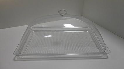 fimel- Campana con bandeja rectangular tamaño 420 x 280 x H 190 mm de plástico