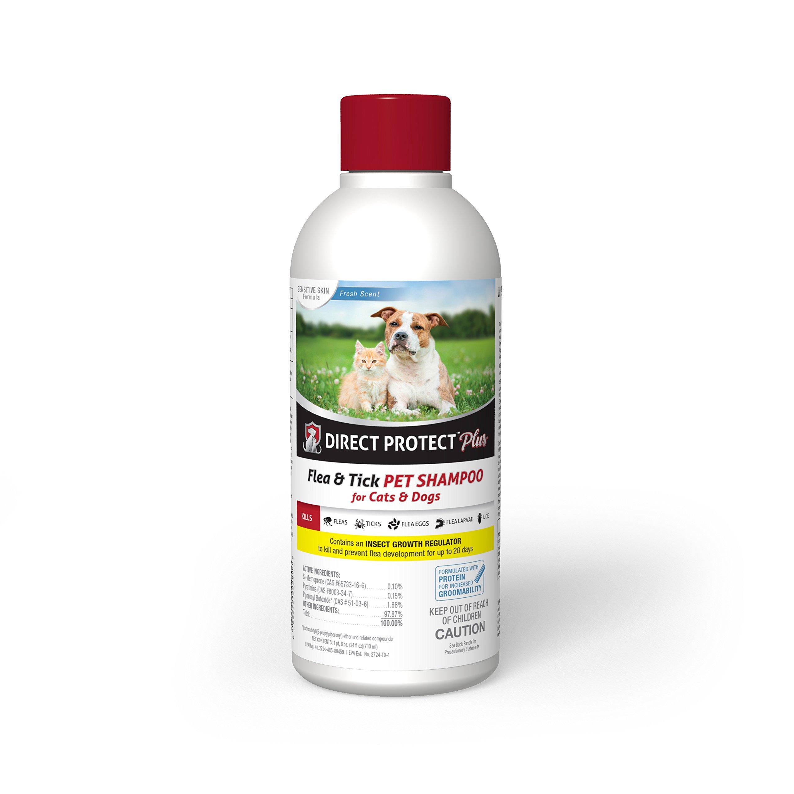Direct Protect Plus Flea & Tick Shampoo Cats & Dogs 24 oz