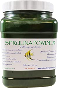 Brine Shrimp Direct Spirulina Powder, 16 oz