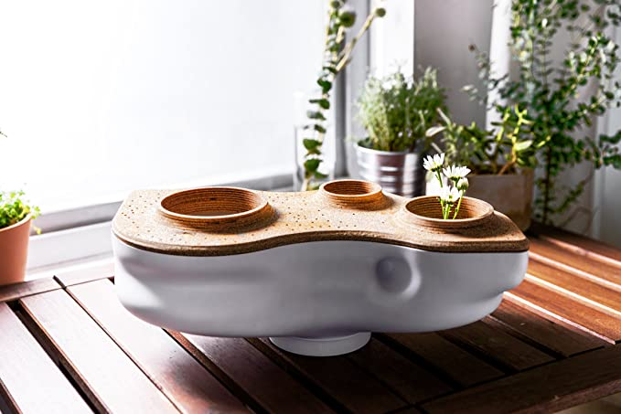 Amazon.com: Biovessel Eco Living Composter Powered by Food ...