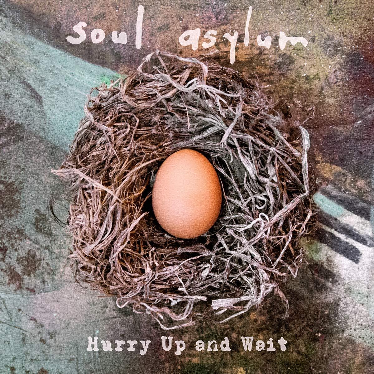 Soul Asylum - Página 2 81Wvf5R1IyL._SL1200_