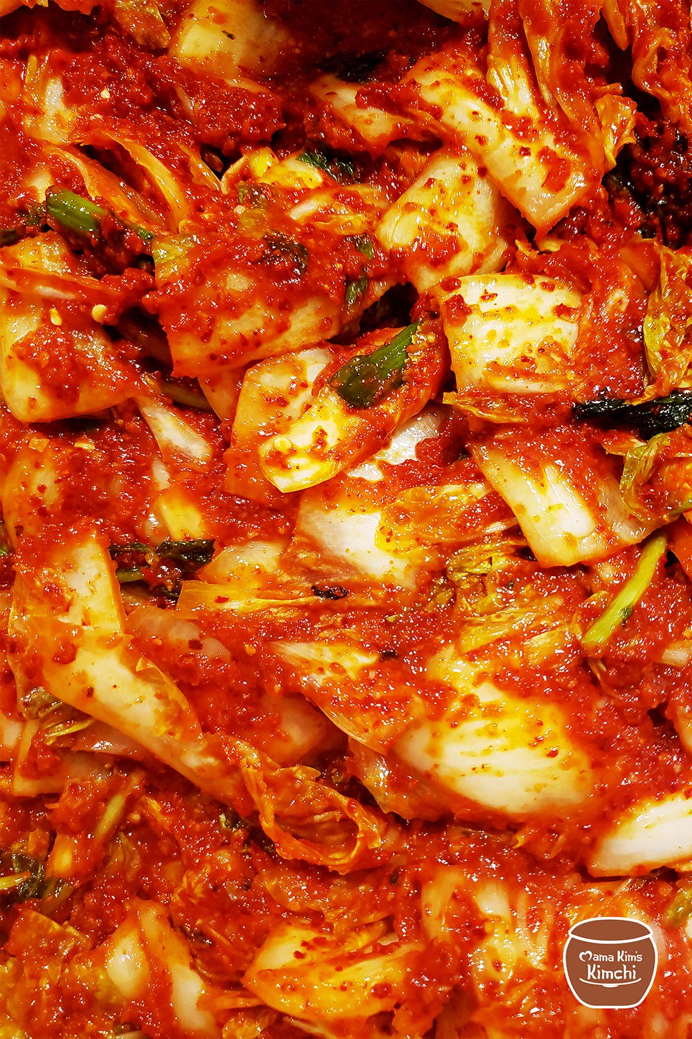 64oz Mama Kim's Kimchi - 2 x Spicy Napa Cabbage Kimchi 32oz Pouch Fresh, Healthy, Natural, Gluten Free, Probiotic, Authentic Korean 81Wwz5mfzxL