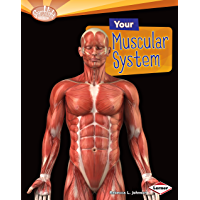 Your Muscular System (Searchlight Books ™ — How Does Your Body Work?)