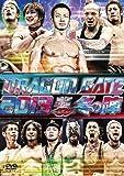 "DRAGON GATE 2013 ""冬の陣"" [DVD]"