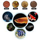 HDE Automatic Fish Feeder WiFi Enabled Programmable Aquarium Smart Device App Controlled Fish Food Dispenser