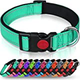 Taglory Reflective Dog Collar with Safety Locking Buckle, Adjustable Nylon Pet Collars for Small Dogs, S, Turquoise