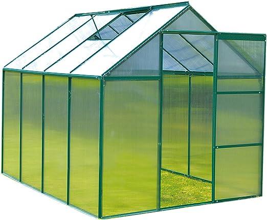 FoxHunter Invernadero de policarbonato transparente y estructura de aluminio, con base y puerta deslizante, color verde, 20 x 15 cm.: Amazon.es: Jardín