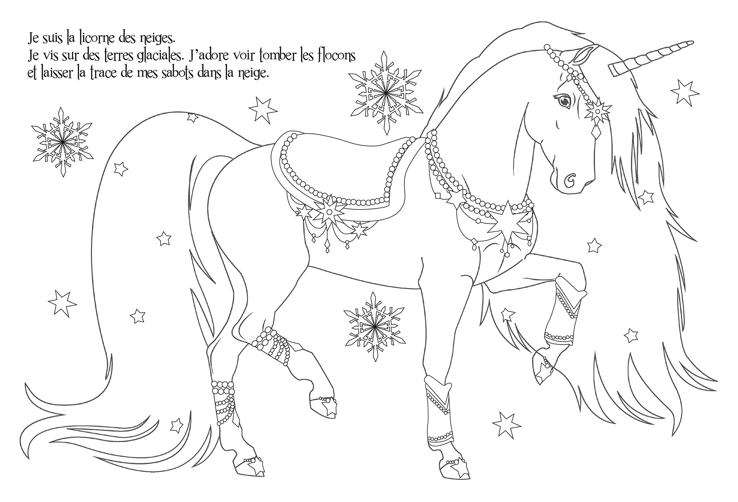 Coloriage Licorne Eau.Mes Tableaux A Colorier Et A Pailleter Animal Style Licornes