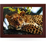 Leopard In Tree. High Quality Beanbag Laptray. L0047 (Brown)
