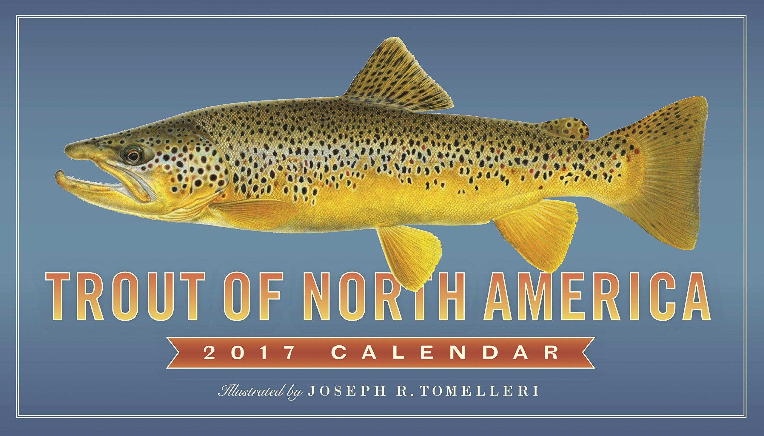 Trout Of North America Wall Calendar 2017 Workman Publishing Tomelleri Joseph R 9780761188490 Amazon Com Books