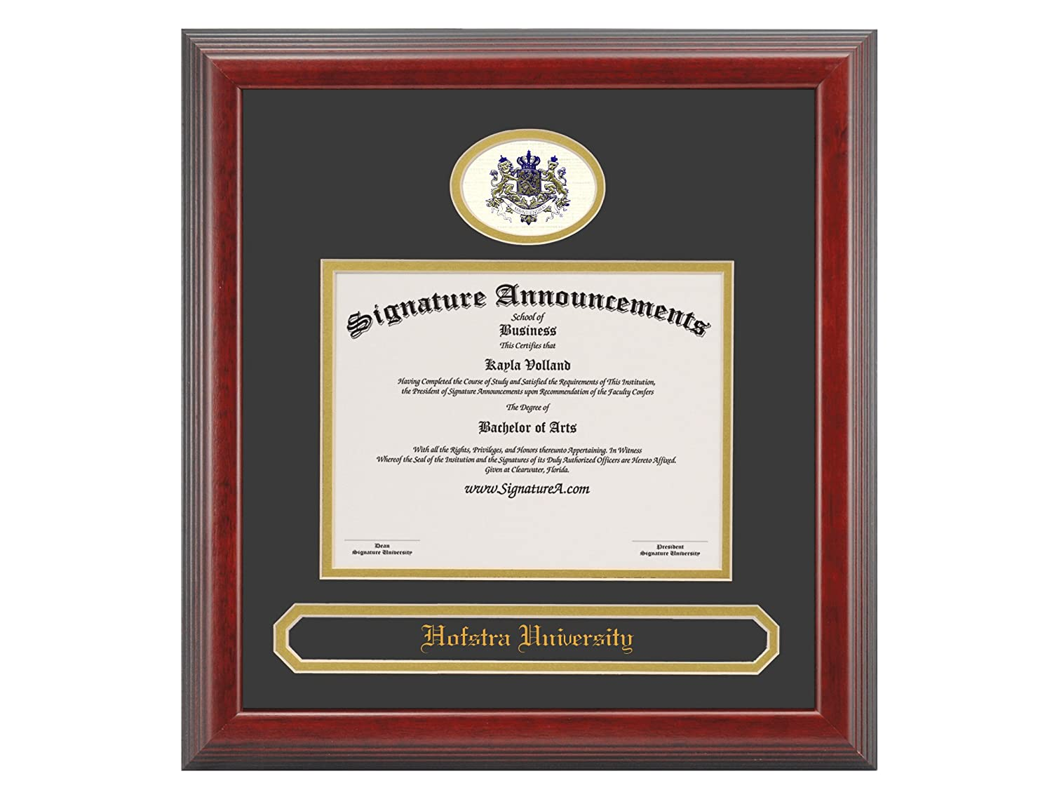 Signature Announcements Hofstra-University Doctorate Sculpted Foil Seal /& Name Graduation Diploma Frame 20 x 20 Cherry