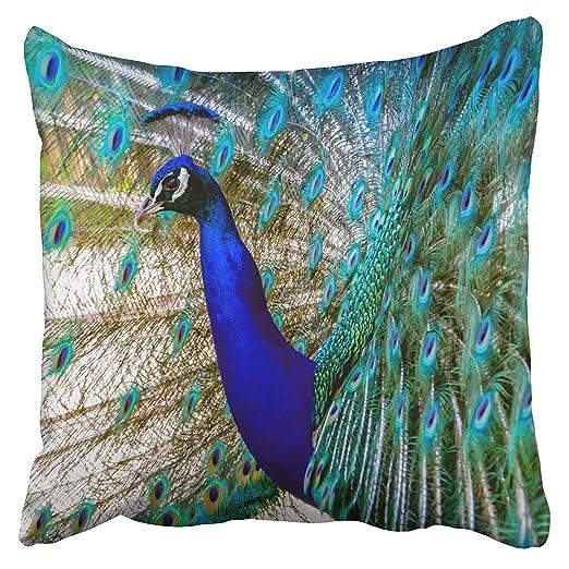 fengyijiating Fundas de Almohada Hermosas Cobalto Azul ...