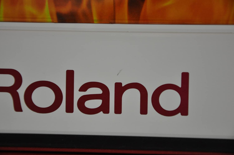 Roland FR-1 Vアコーディオン B001QS09TC