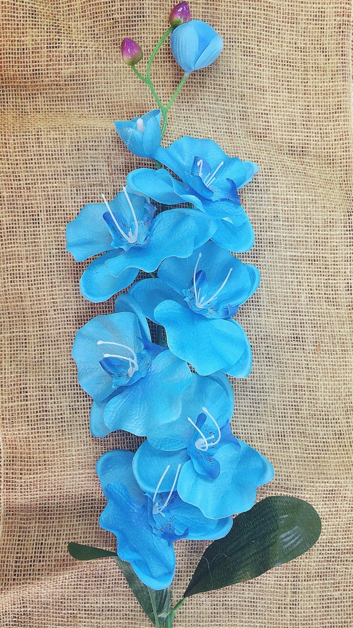 Amazon.com: 6xJumbo Artificial Butterfly Silk Orchid Flowers Plant Party Home Decor(Turquoise)|Ohah: Kitchen & Dining