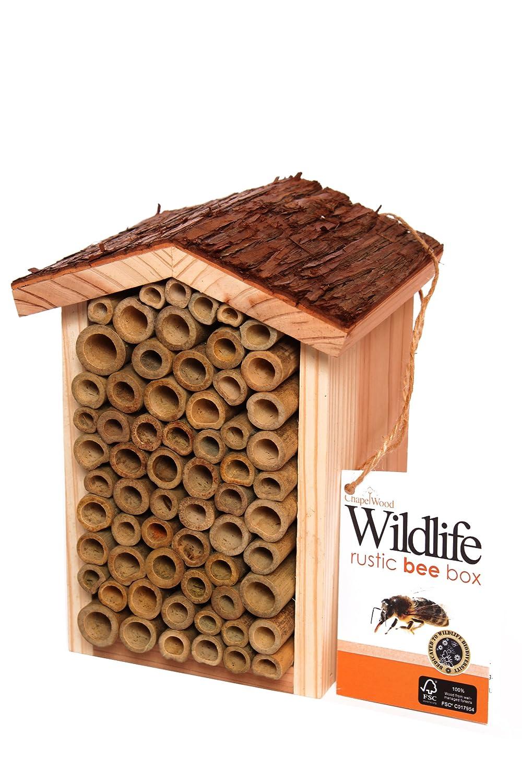 Chapelwood Bee Box Evergreen Garden Care Ltd CPW0681