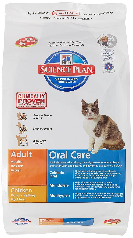 Hills Feline Adult Oral Care Comida para Gatos - 1500 gr: Amazon.es: Productos para mascotas