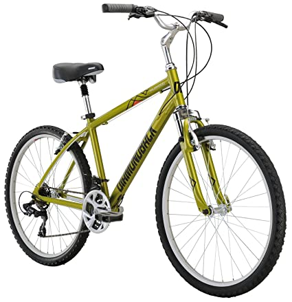 "Diamondback Bicycles Wildwood Classic Comfort Bike, 19""/Large, Green"