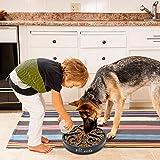 Slow Feeder Dog Bowl Bloat Stop Dog Food Bowl