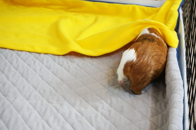 GuineaDad Fleece Liner 2.0 Conejillo de Indias del paño grueso y suave de la jaula Liners conejillo de Indias de ropa de cama de madriguera manga bolsillo a ...