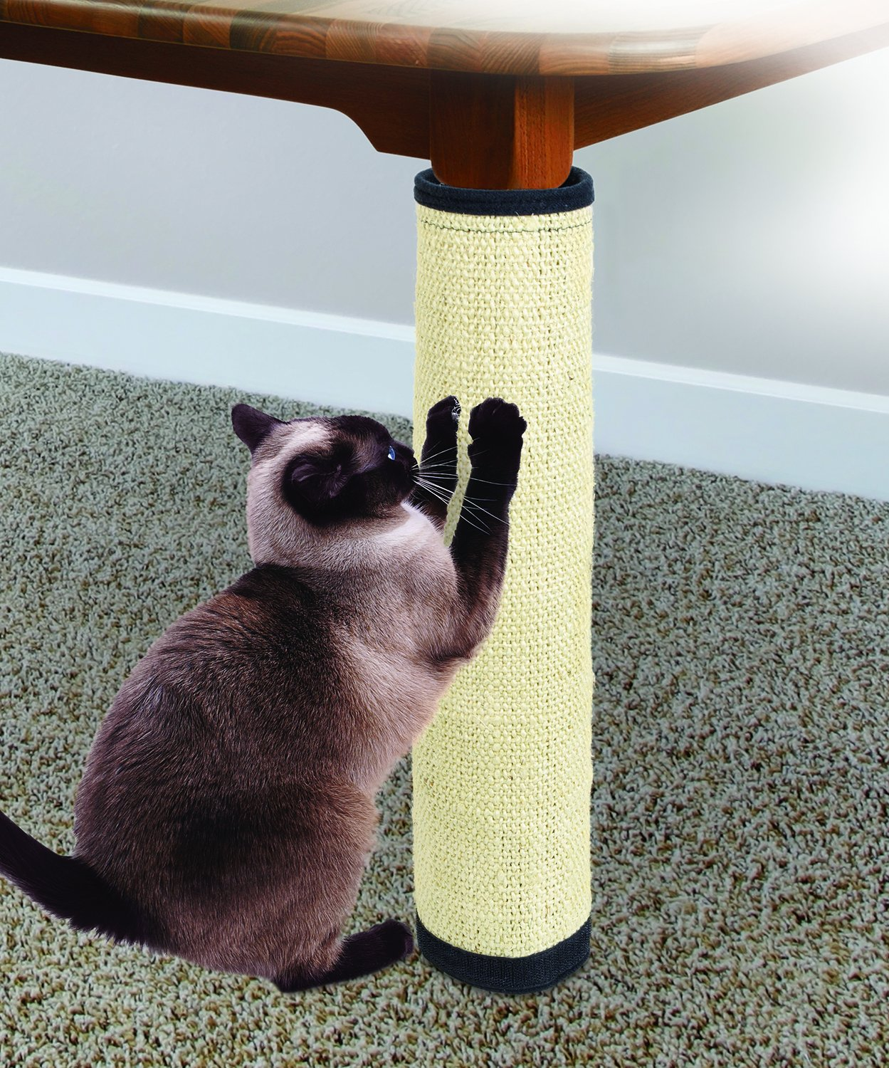 2 IN 1 CAT SCRATCHER MAT AND FURNITURE PROTECTOR