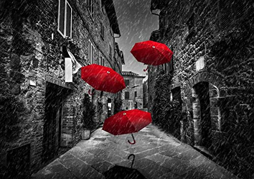 Faicai Art Black and White Wall Art HD Prints Landscape Canvas Paintings Red Umbrellas Flying