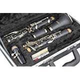 LJ Hutchen Bb Clarinet with Hardshell Case