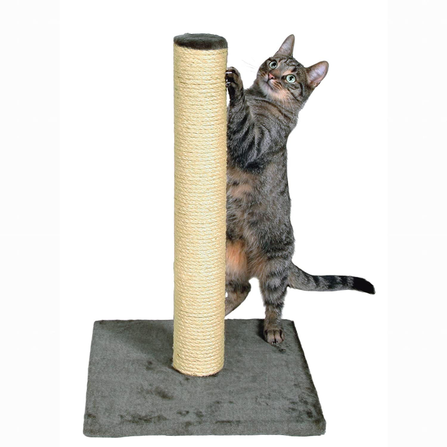 Trixie Parla Scratching Post, 62 cm
