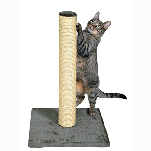 best-value-Cat-Scratching-Post