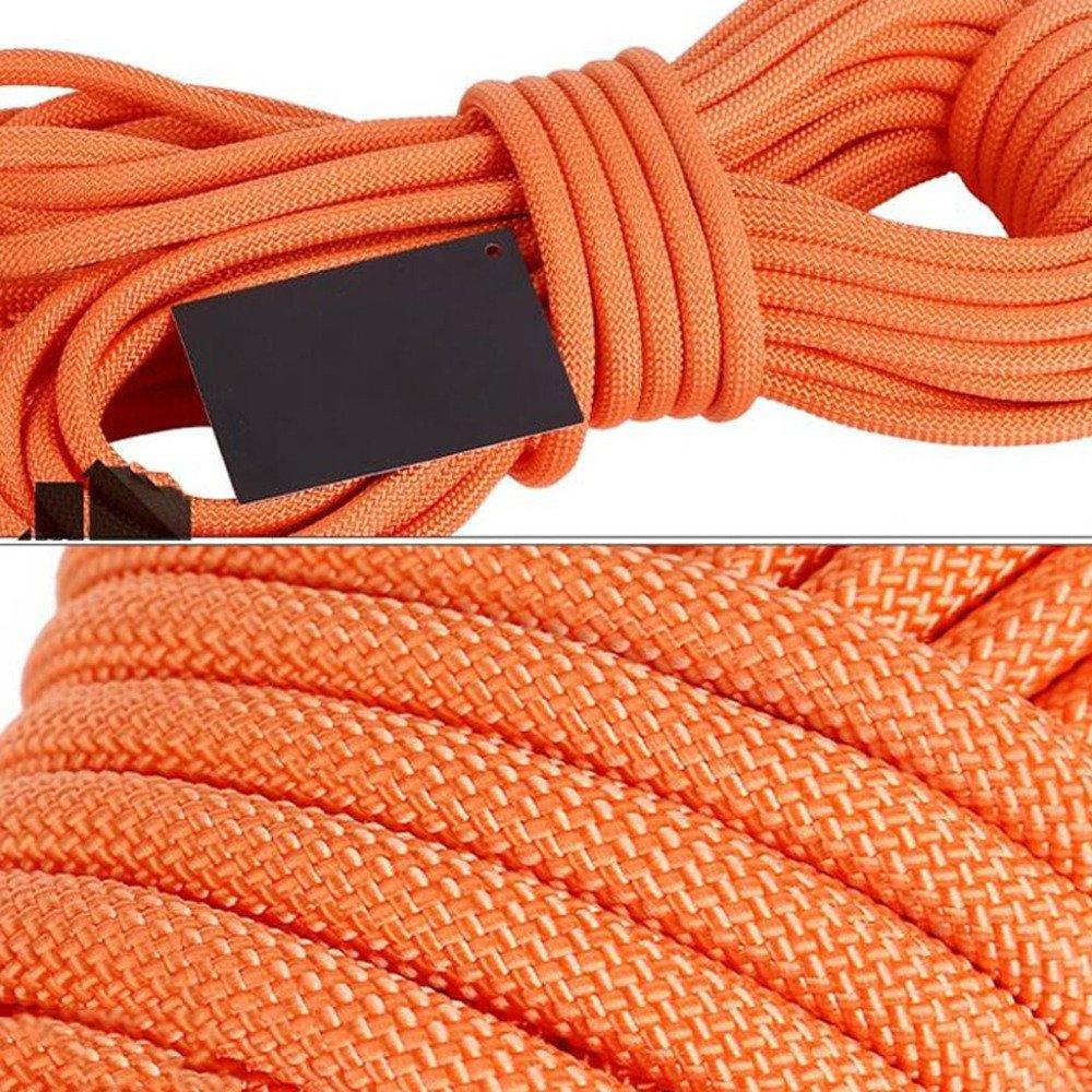 LDFN LDFN LDFN Klettern Seil Sicherheit Spider-Man Polypropylen-Seil Im Freien Brandbekämpfung Verschleißfest,Blau-30m9.5mm B07D35RZXJ Schlingen Umweltfreundlich f6b94d