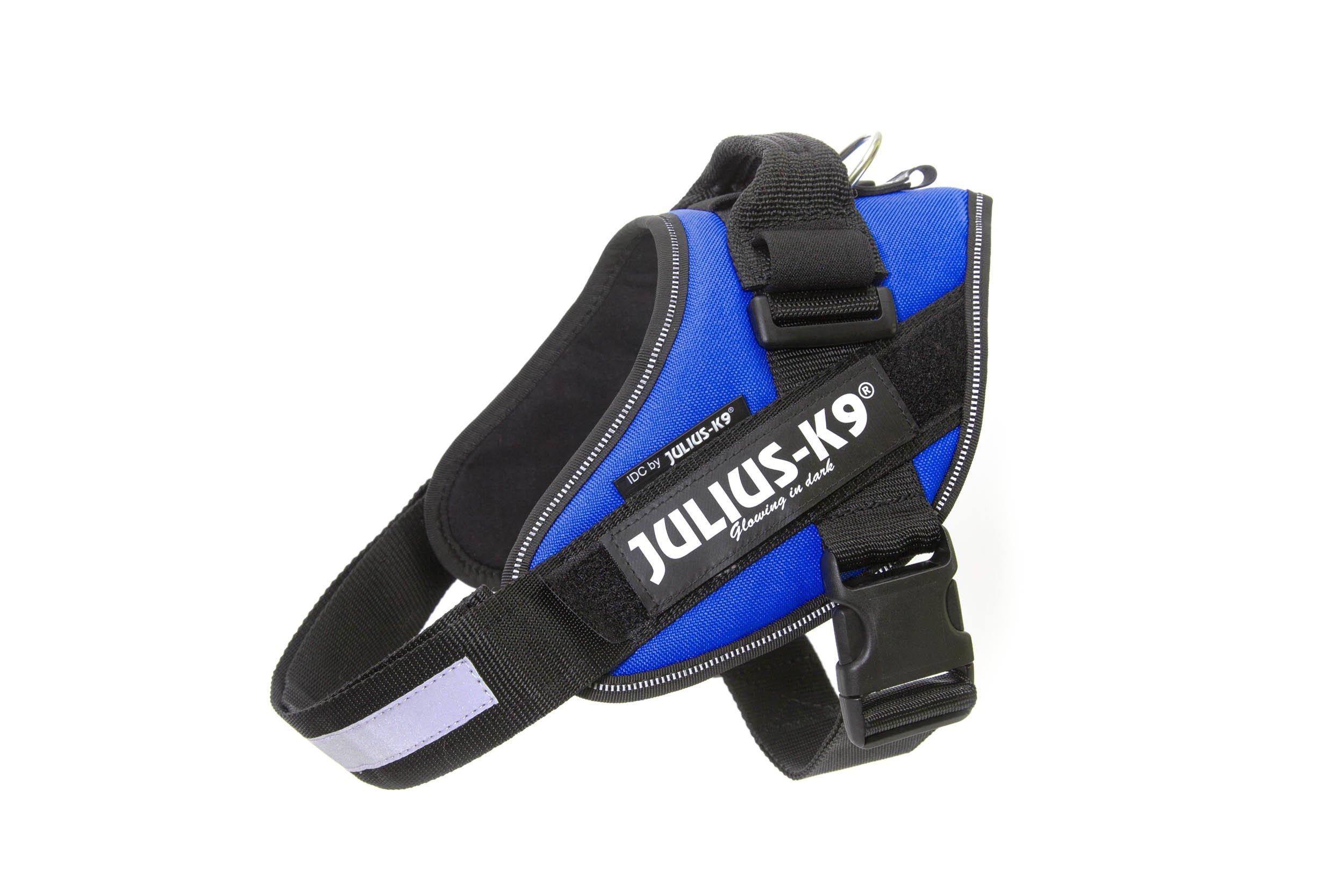 Julius-K9 16IDC-B-1 IDC Power Harness, Size: 1 (63-85cm/26-33.5''), Blue