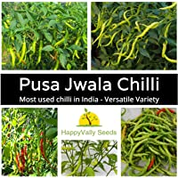 Chilli Pusa Jwala 10 Chilli Seeds Versatile Indian Super HOT Spicy Spice Pepper