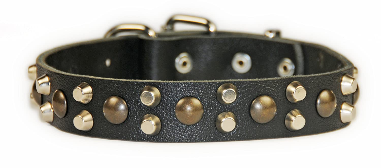 Dean and Tyler BUMPS and BITS-Inch, Dog Collar with Capped Rivets and Chrome Plated Steel Hardware, Black, Size 22 by 1-Inch, Fits Neck 20 to 24-Inch