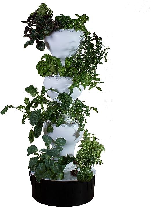 foody 12 – VERTICAL jardín hidropónico – Maceta autorriego – Gira automáticamente – 44 planta sitios – Crecer gran sabor alimentos año alrededor – hecho de polipropileno de grado de alimentos: Amazon.es: Jardín