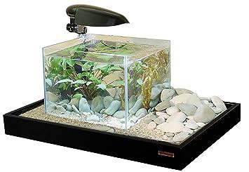 Acuario de cristal Zen Artist Combi Negro: Amazon.es: Productos para mascotas