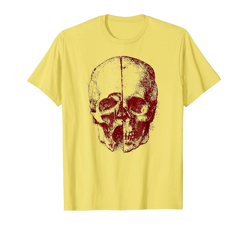 Amazon Leonardo Da Vinci Human Skull Anatomy T Shirt Clothing