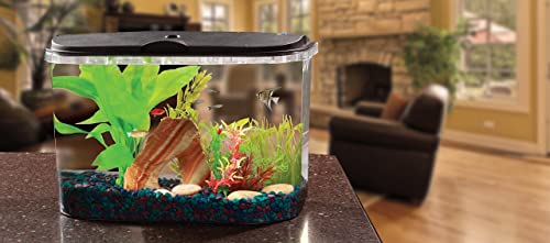 Panaview 5 Gallon Fish tank