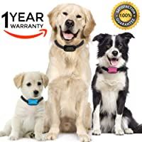 Premium Paws Advanced Intelligence Anti Bark Dog Collar. Stop Dogs Barking Sound & Vibration, Small & Large Dogs, No Shock, No Spray - Dog Bark Collar Canine Psychology E-Book