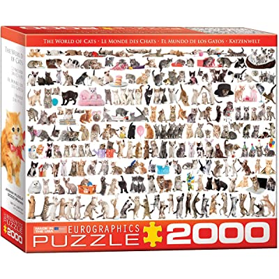 EuroGraphics The World of Cats Puzzle (2000-Piece): Toys & Games