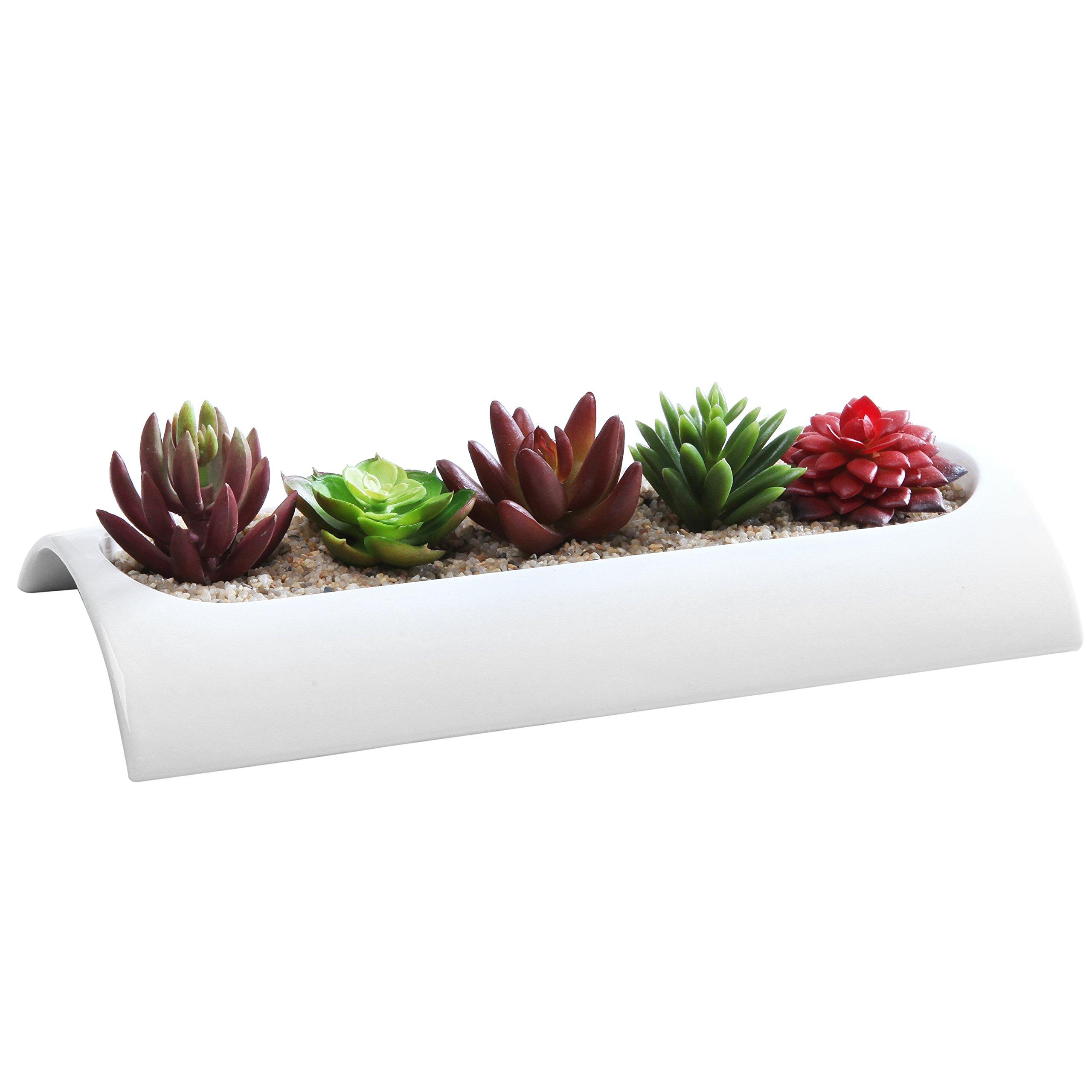 11 X 5 Inch Curved Modern Rectangular Ceramic Flower Dish, Sleek Center Piece Succulent Planter, White by MyGift