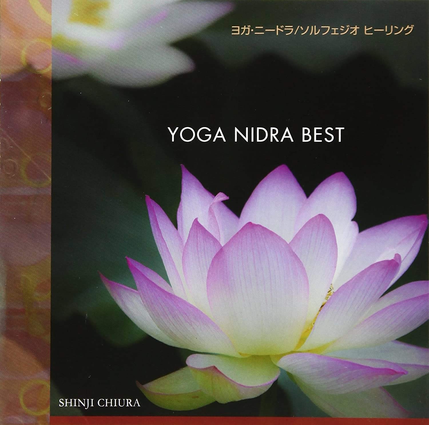 YOGA NIDRA BEST: Amazon.es: Música