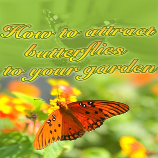 How To Attract Butterflies To Your Gardens - Discover How Can Dramatically Increase The Number of Butterflies That Linger Around Your Beautiful Garden