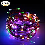 Wiseworld LED Fairy Lights,2 Set of 33FT 10M 100led Waterproof String Lights USB Plug In for Bedroom Indoor Outdoor 33 Ft Copper Wire 100 LED Bulbs Multi Colored